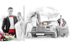 Biler mit Hochzeitsauto